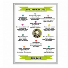 Haftanın şairi Ziya Paşa