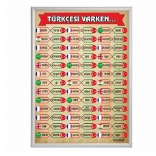 Türkçesi Varken