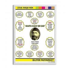 Ziya Paşa Afiş